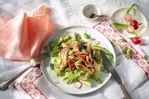 Pulled Chicken-Salat mit Spargel